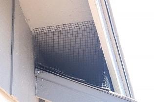 Pigeon Ridding + Blocking