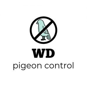 wd-pigeon-control-business-logo_14