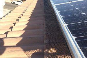 solar-panel-bird-netting-Chandler-2_5-300x200